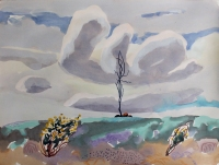 'Wildflowers tree and cloud Nuggety Hills' Mark Dober